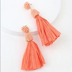 🆕 Beaded Raffia Earrings